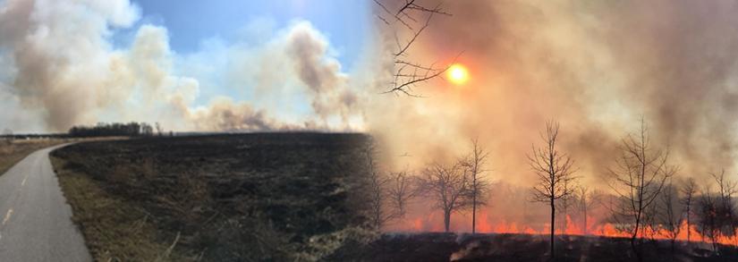 Induction Walk Orland Grasslands Prescribed Fire