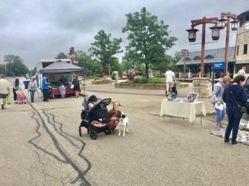 Tinley Park Mom Dog and Baby In Stroller at Tinley Park Farmers Market