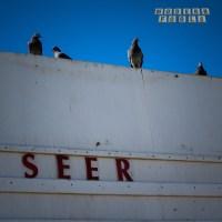 Modern Fools | Seer: Exclusive Album Premiere