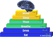 Brain Nourishment Score graphic