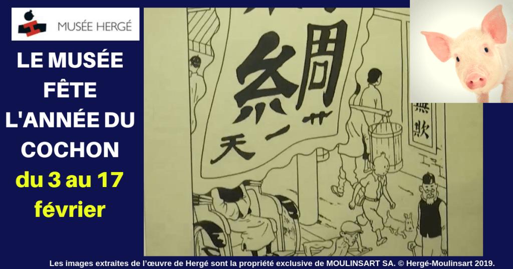 """Résultat de recherche d'images pour """"directrice du musée Hergé photos photos"""""""