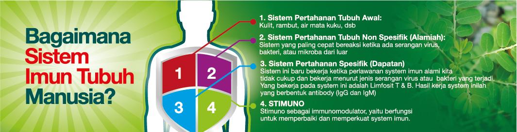 Stimuno untuk balita - sistem imun anak