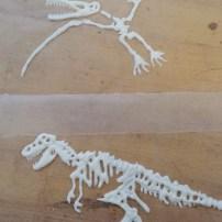 Paleontological find -- complete dinosaur bone.