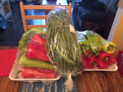 Peppers and green beans rescued from disposal at the grocery store. All of this cost $8.