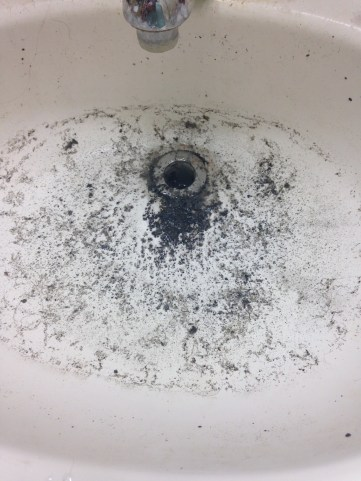 This week our sink burped this up.