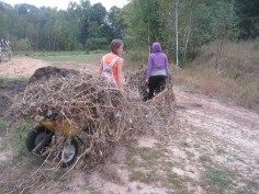 Cleaning up the fields at Garden Farme