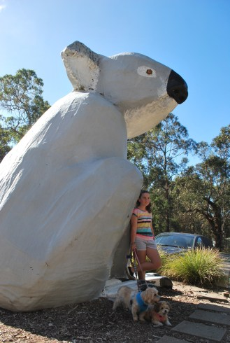 With Lucie Lu doing our best Koala pose