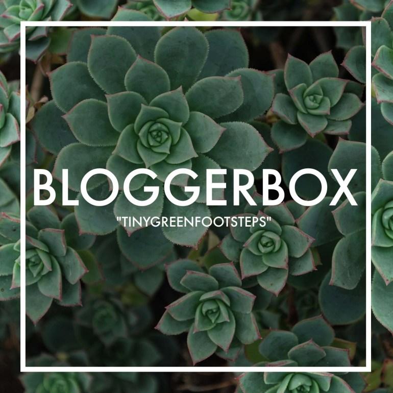 bloggerbox tinxgreenfootsteps