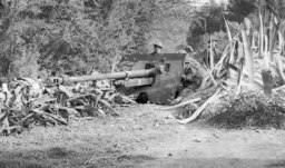 A 17pdr in position, but with not much effort on camouflage