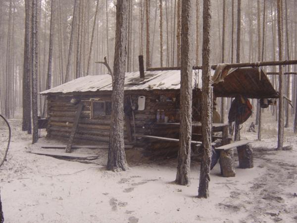 Inside Pictures Of Small Log Cabin Joy Studio Design