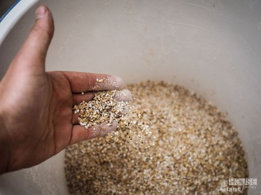 2) Pour grains into a large water tight container