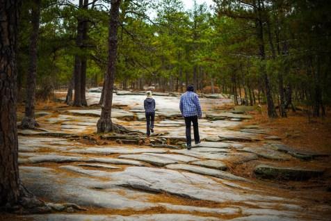 THGJ Stone Mountain - 0002