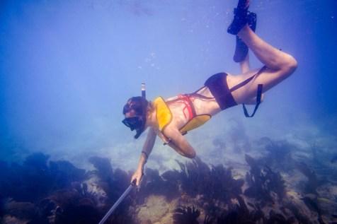 Keys Snorkeling - 0009