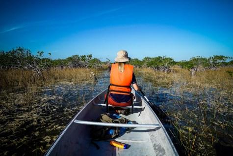 THGJ Everglades 9 Mile Pond - 0009