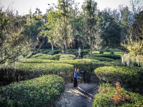 Horticulture Maze