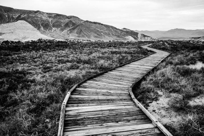 Death Valley Salt Creek - 0001