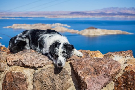 Salies is sad she didn't see the Hoover Dam