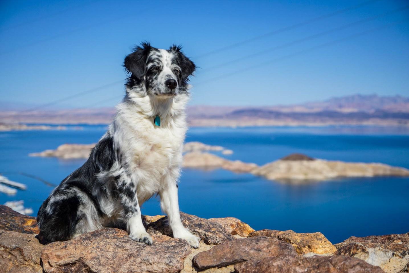 THGJ Lake Mead - 0002