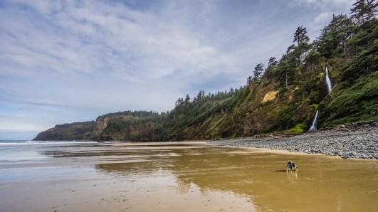 Oregon Coast Short Beach - 0007