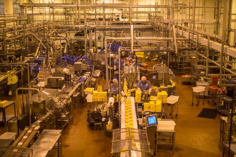 Tillamook Cheese Factory - 0002