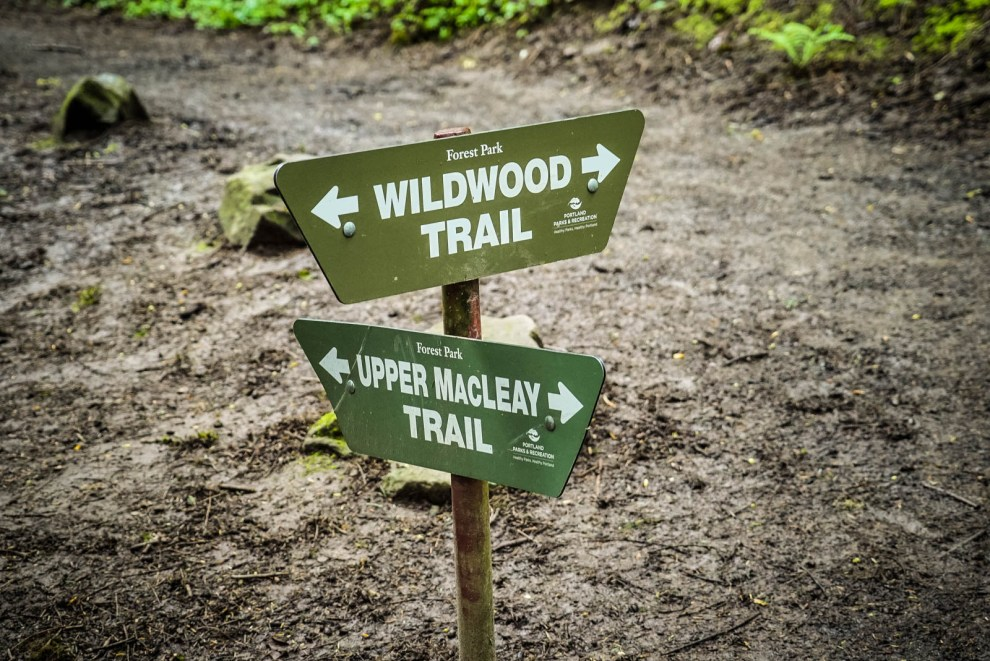 Wildwood Trail