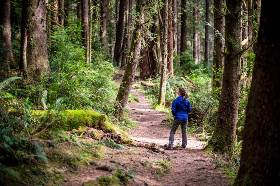 Fern Canyon Hike - 0010