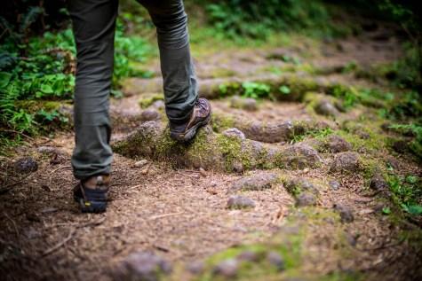 Fern Canyon Hike - 0012