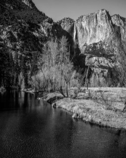 Upper Yosemite Falls in the Background