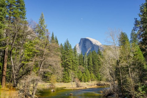 Half Dome from Valley Loop
