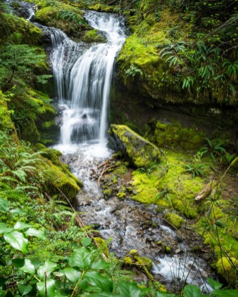 Angel Falls Hike - 0005