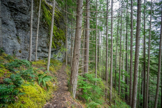Angel Falls Hike - 0020