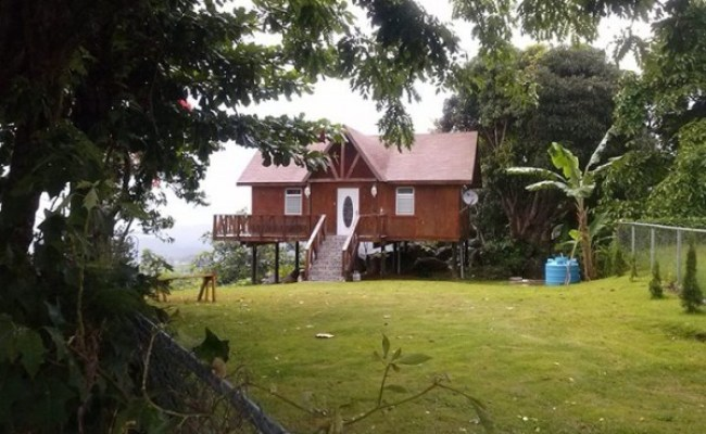 Little Cabin On Stilts In Puerto Rico Tiny House Pins