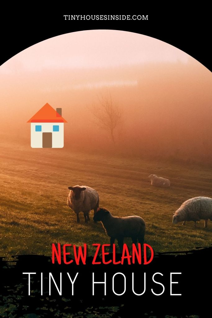 tiny houses in new zealand
