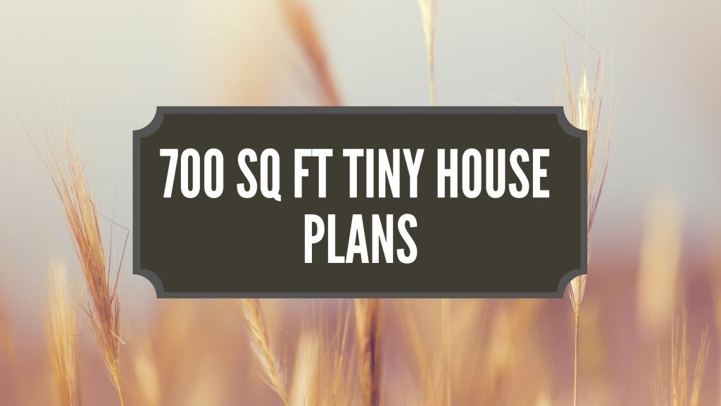 700 sq ft Tiny House Plans