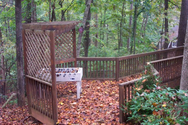 Backyard of our Atlanta house in the fall.