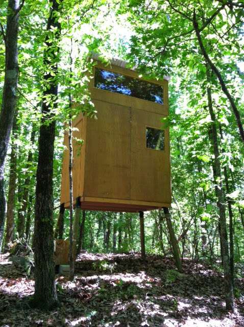 Man Building Tiny Cabin In The Woods