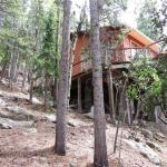 1960's Tiny Cabin on 2 Acres in Idaho Springs, Colorado For Sale 002
