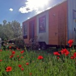 204-Sq-Ft-Tiny-House-For-Sale-002