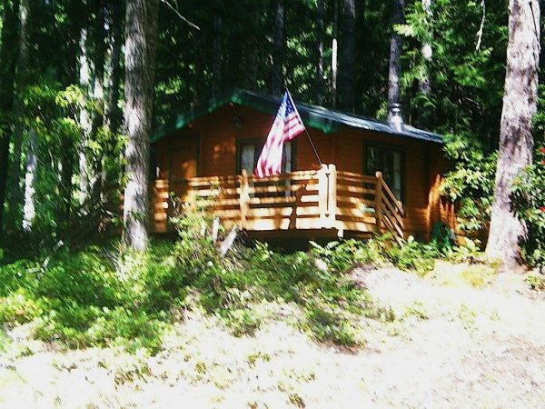 384-sq-ft-tiny-cabin-for-sale-0001