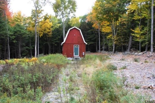 400-sq-ft-tiny-cabin-on-1-acre-for-sale-001