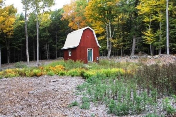 400-sq-ft-tiny-cabin-on-1-acre-for-sale-0010
