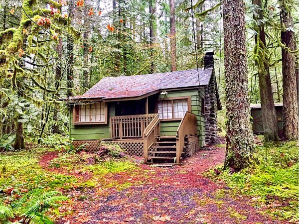 476 Sq Ft Rhododendron Cabin For Sale