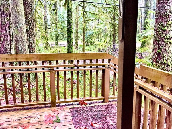 Tiny Home Designs: 476 Sq. Ft. Rhododendron Cabin For Sale