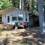 480 Sq. Ft. Tahuya Cabin For Sale 001