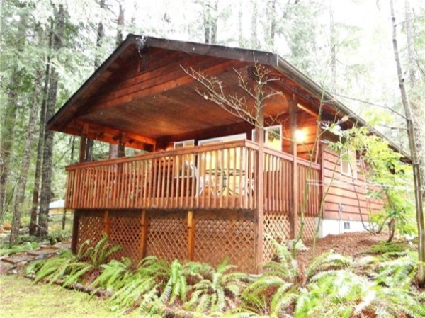 480 sf tiny cabin in the woods for sale 002