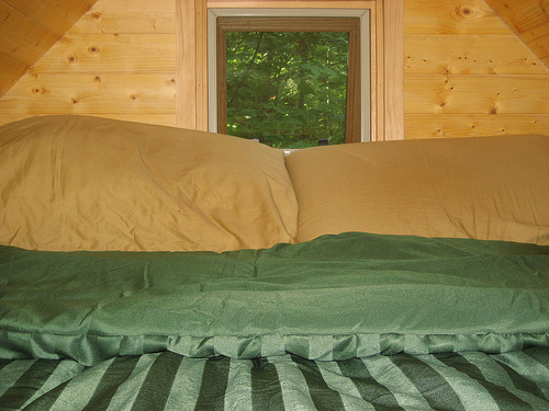 The comforter matches the trees! Photo by Laura M. LaVoie