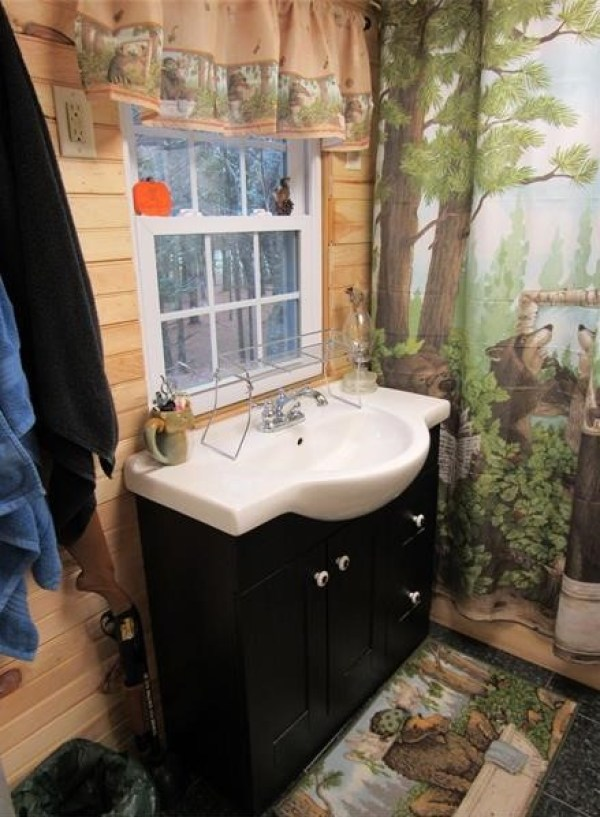 90k-tiny-cabin-on-23-acres-for-sale-013