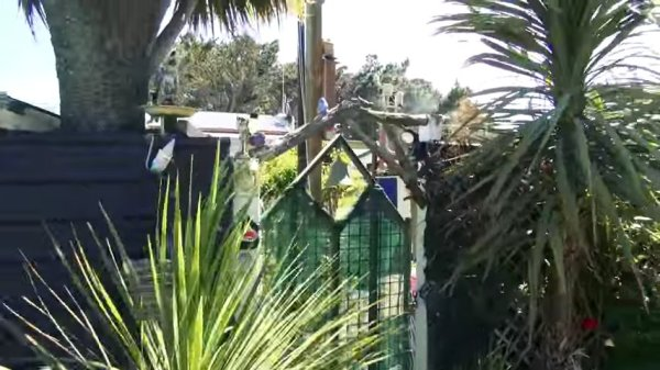 Couple go from Nomadic Converted Bus Living to Micro Homestead Life in New Zealand 002