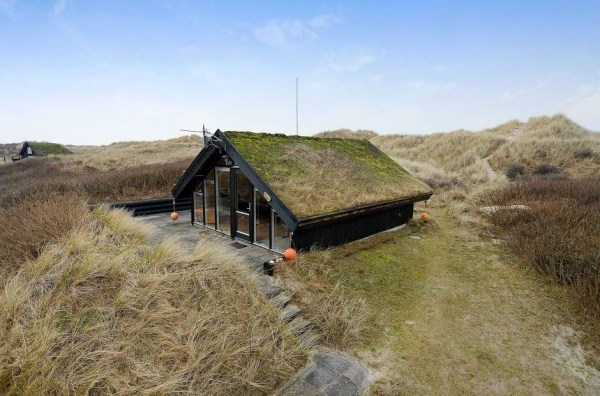 430 Sq. Ft. Tiny Cottage with Living Roof For Sale