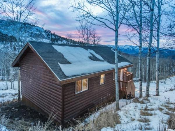 Heber City Tiny Log Cabin 0030